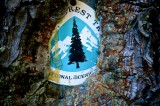 Photo Essay: The Pacific Crest Trail